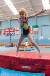 Recreational Gymnasts