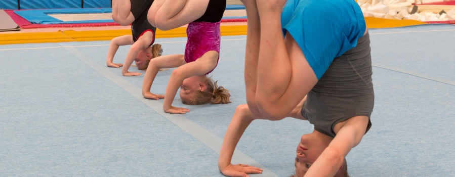 Recreational Gymnasts practising headstands